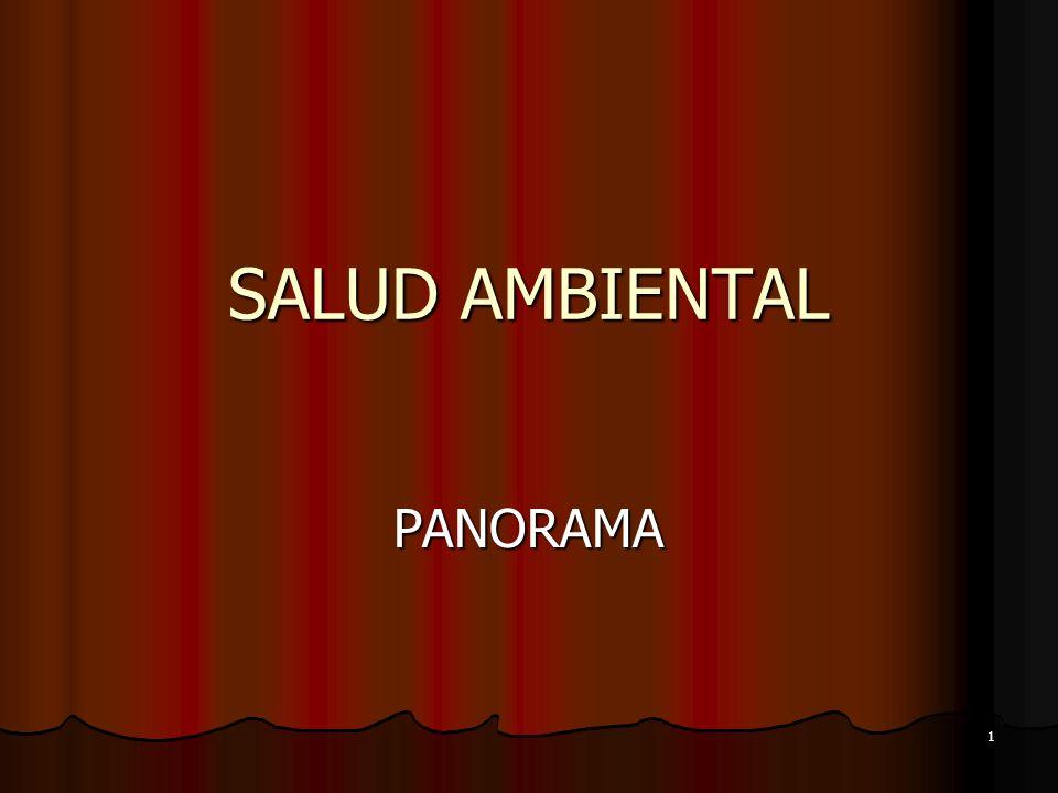 1 SALUD AMBIENTAL PANORAMA