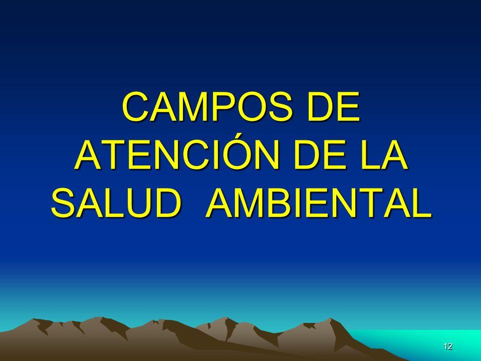 12 CAMPOS DE ATENCIÓN DE LA SALUD AMBIENTAL