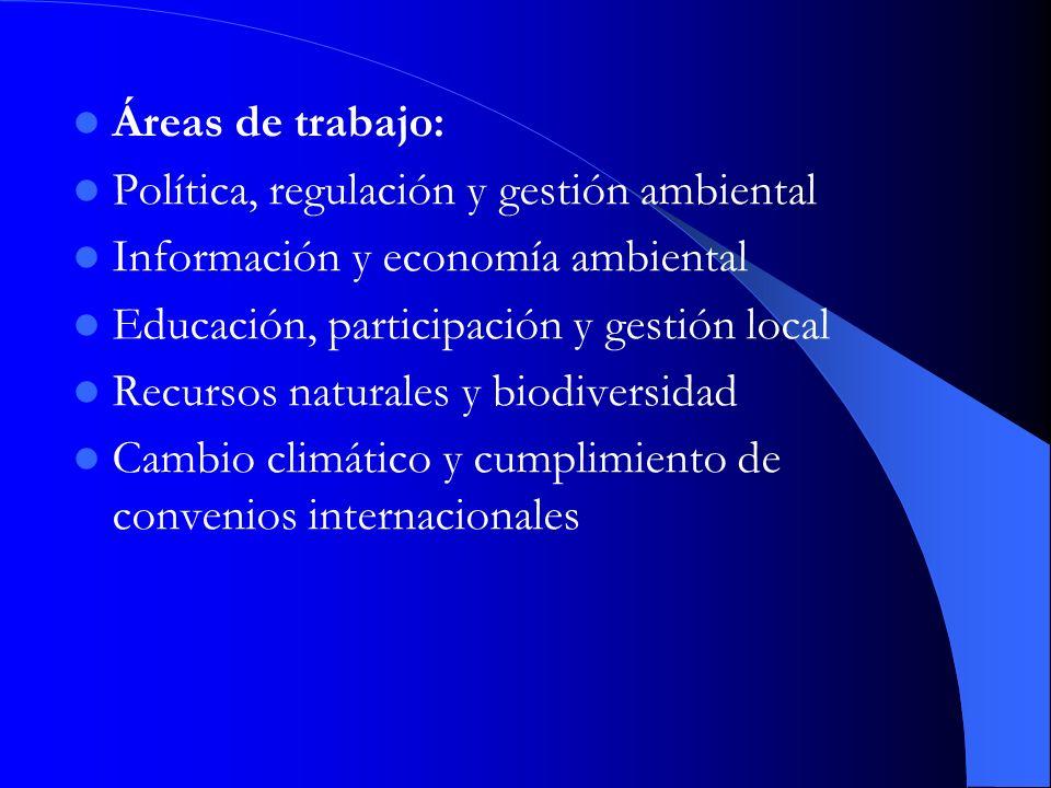 Áreas de trabajo: Política, regulación y gestión ambiental Información y economía ambiental Educación, participación y gestión local Recursos naturale