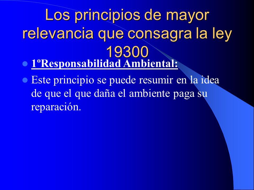 Los principios de mayor relevancia que consagra la ley 19300 1ºResponsabilidad Ambiental: Este principio se puede resumir en la idea de que el que dañ
