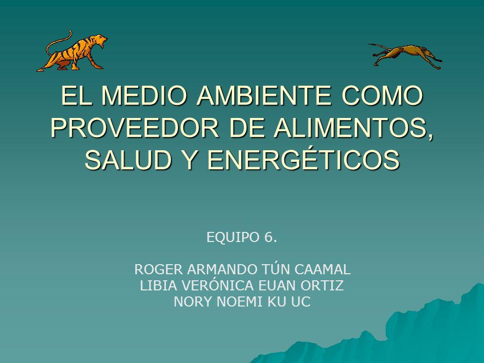 EL MEDIO AMBIENTE COMO PROVEEDOR DE ALIMENTOS, SALUD Y ENERGÉTICOS EQUIPO 6. ROGER ARMANDO TÚN CAAMAL LIBIA VERÓNICA EUAN ORTIZ NORY NOEMI KU UC