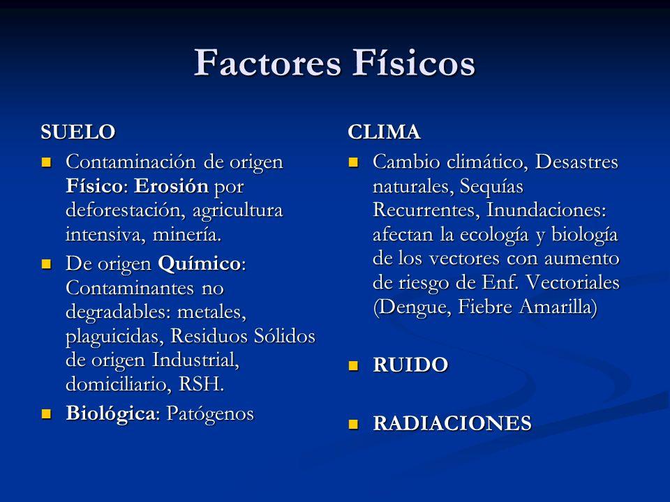 Factores Físicos SUELO Contaminación de origen Físico: Erosión por deforestación, agricultura intensiva, minería. Contaminación de origen Físico: Eros