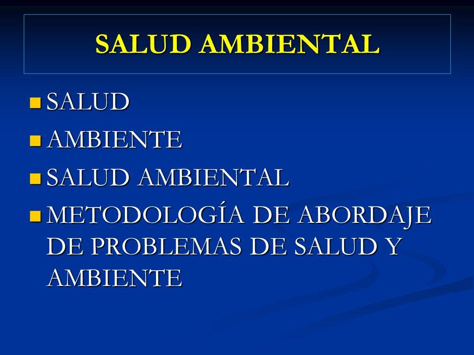 SALUD AMBIENTAL SALUD SALUD AMBIENTE AMBIENTE SALUD AMBIENTAL SALUD AMBIENTAL METODOLOGÍA DE ABORDAJE DE PROBLEMAS DE SALUD Y AMBIENTE METODOLOGÍA DE