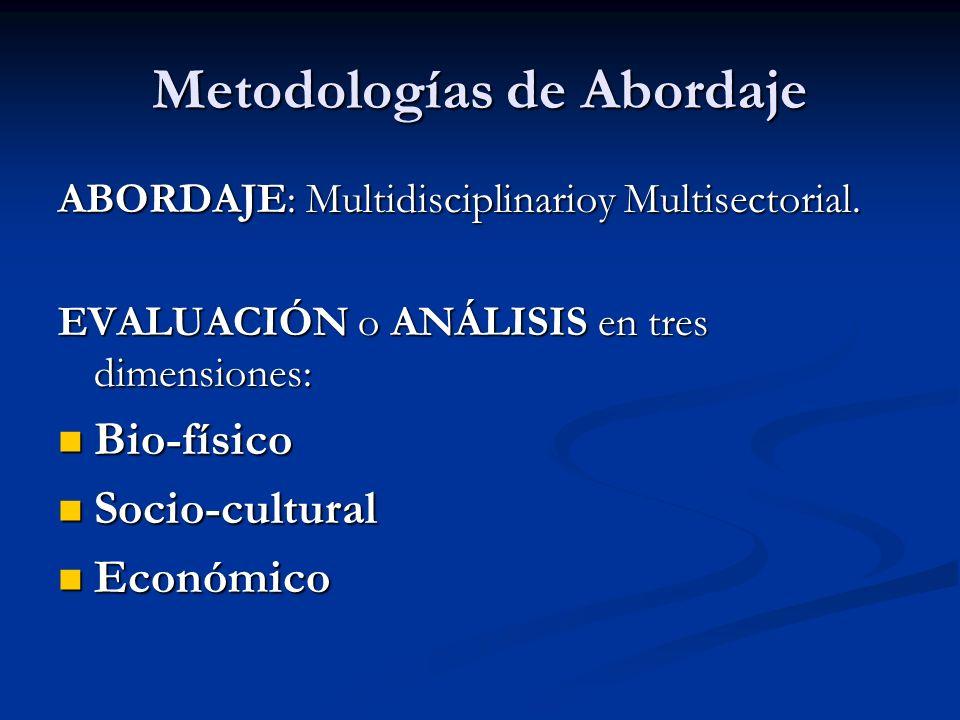 Metodologías de Abordaje ABORDAJE: Multidisciplinarioy Multisectorial. EVALUACIÓN o ANÁLISIS en tres dimensiones: Bio-físico Bio-físico Socio-cultural