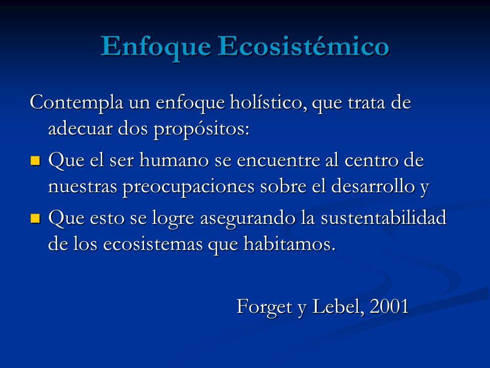 Enfoque Ecosistémico Contempla un enfoque holístico, que trata de adecuar dos propósitos: Que el ser humano se encuentre al centro de nuestras preocup