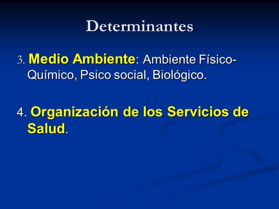 Determinantes 3. Medio Ambiente : Ambiente Físico- Químico, Psico social, Biológico. 4. Organización de los Servicios de Salud.