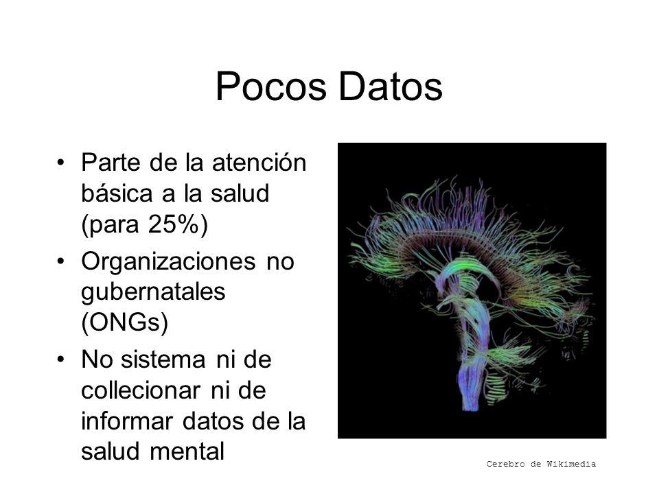 Pocos Datos Parte de la atención básica a la salud (para 25%) Organizaciones no gubernatales (ONGs) No sistema ni de collecionar ni de informar datos