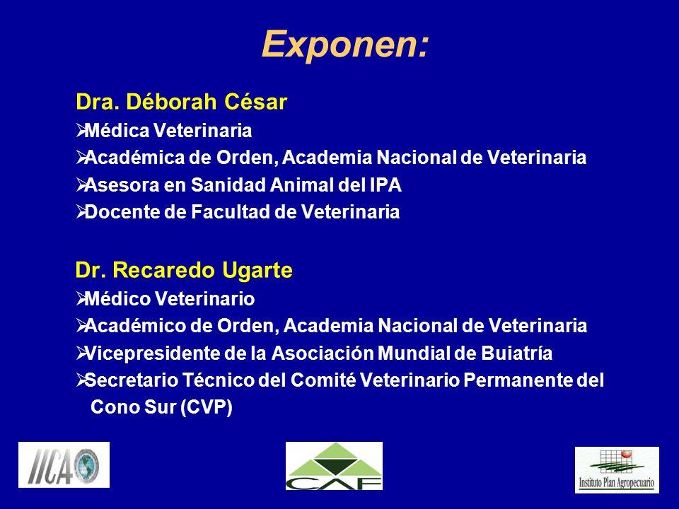 Exponen: Dra. Déborah César Médica Veterinaria Académica de Orden, Academia Nacional de Veterinaria Asesora en Sanidad Animal del IPA Docente de Facul