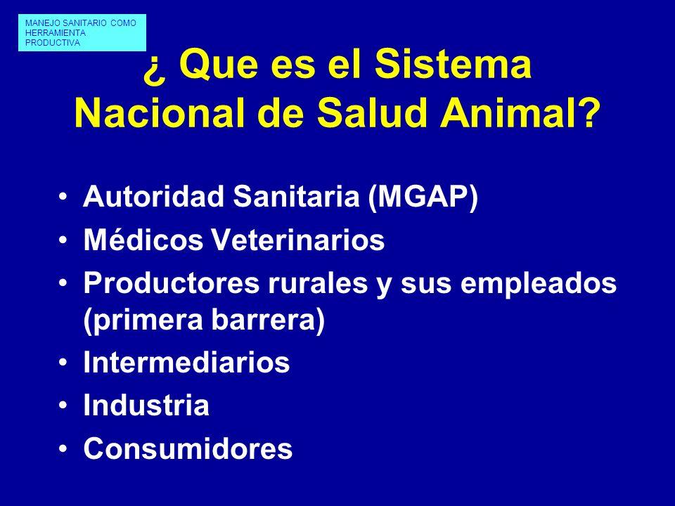 ¿ Que es el Sistema Nacional de Salud Animal? Autoridad Sanitaria (MGAP) Médicos Veterinarios Productores rurales y sus empleados (primera barrera) In
