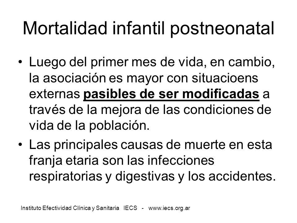 Instituto Efectividad Clínica y Sanitaria IECS - www.iecs.org.ar Mortalidad infantil postneonatal Luego del primer mes de vida, en cambio, la asociaci
