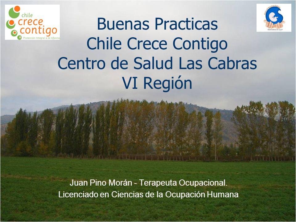 Buenas Practicas Chile Crece Contigo Centro de Salud Las Cabras VI Región Juan Pino Morán - Terapeuta Ocupacional.