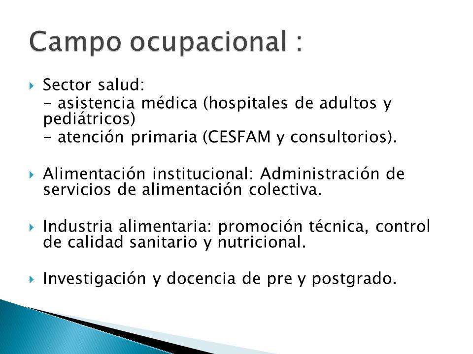 Sector salud: - asistencia médica (hospitales de adultos y pediátricos) - atención primaria (CESFAM y consultorios). Alimentación institucional: Admin