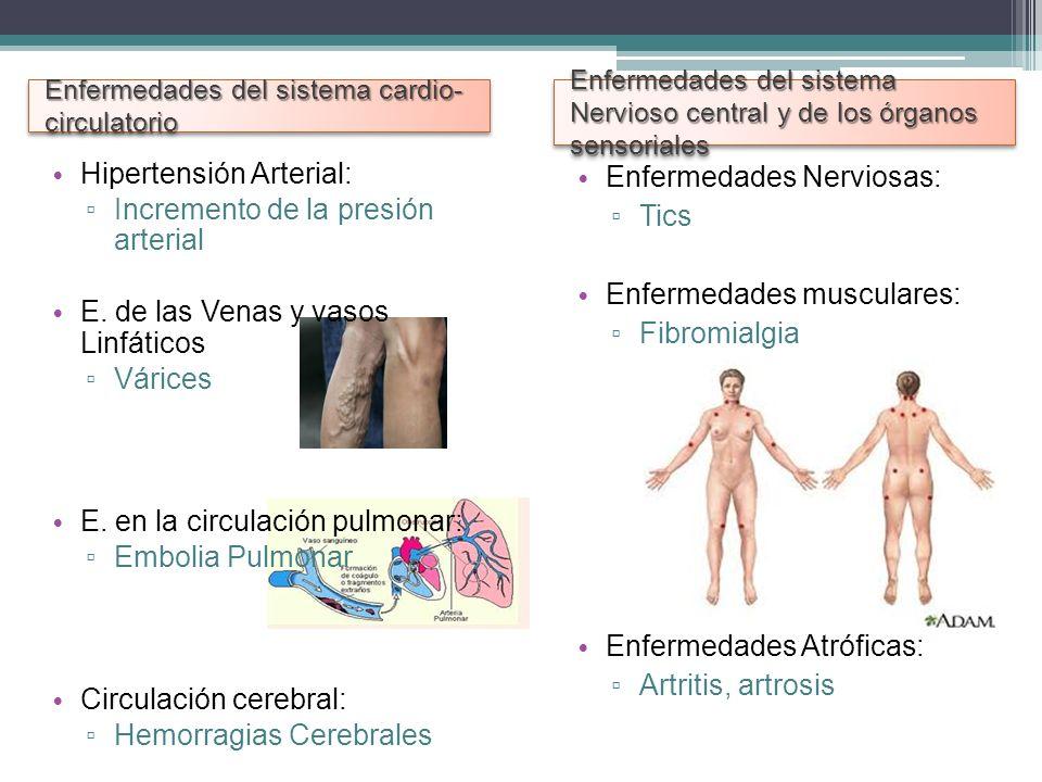 Enfermedades del sistema cardio- circulatorio Enfermedades del sistema Nervioso central y de los órganos sensoriales Hipertensión Arterial: Incremento