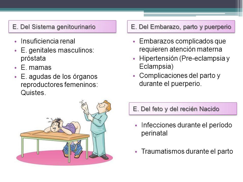 E. Del Sistema genitourinario E. Del Embarazo, parto y puerperio Insuficiencia renal E. genitales masculinos: próstata E. mamas E. agudas de los órgan