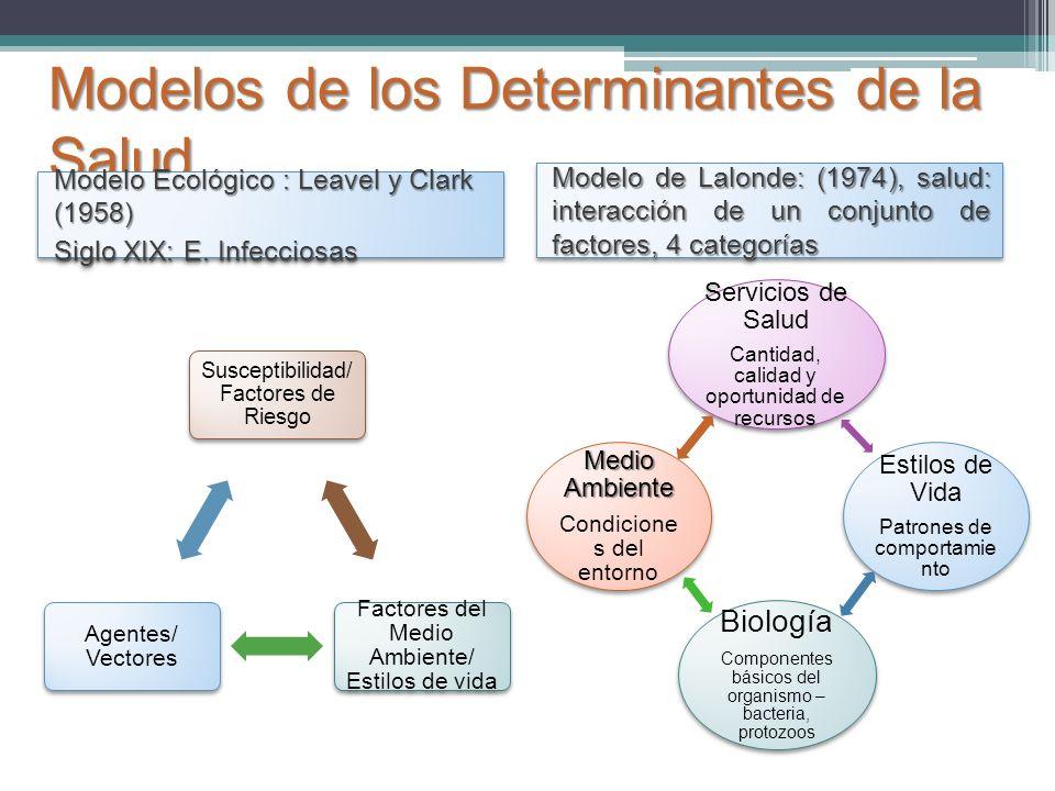 Modelos de los Determinantes de la Salud Susceptibilidad/ Factores de Riesgo Factores del Medio Ambiente/ Estilos de vida Agentes/ Vectores Servicios