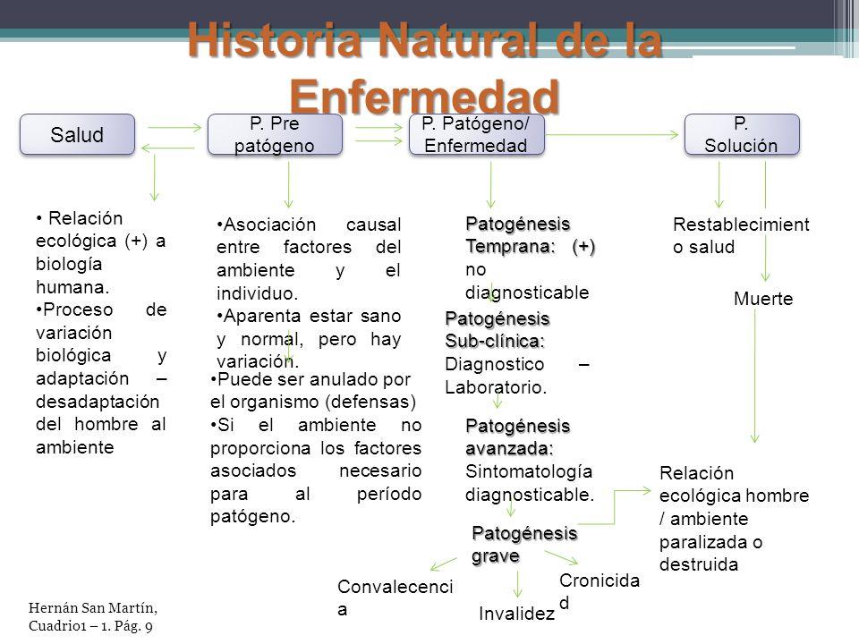 Historia Natural de la Enfermedad Salud P. Pre patógeno P. Patógeno/ Enfermedad P. Solución Relación ecológica (+) a biología humana. Proceso de varia