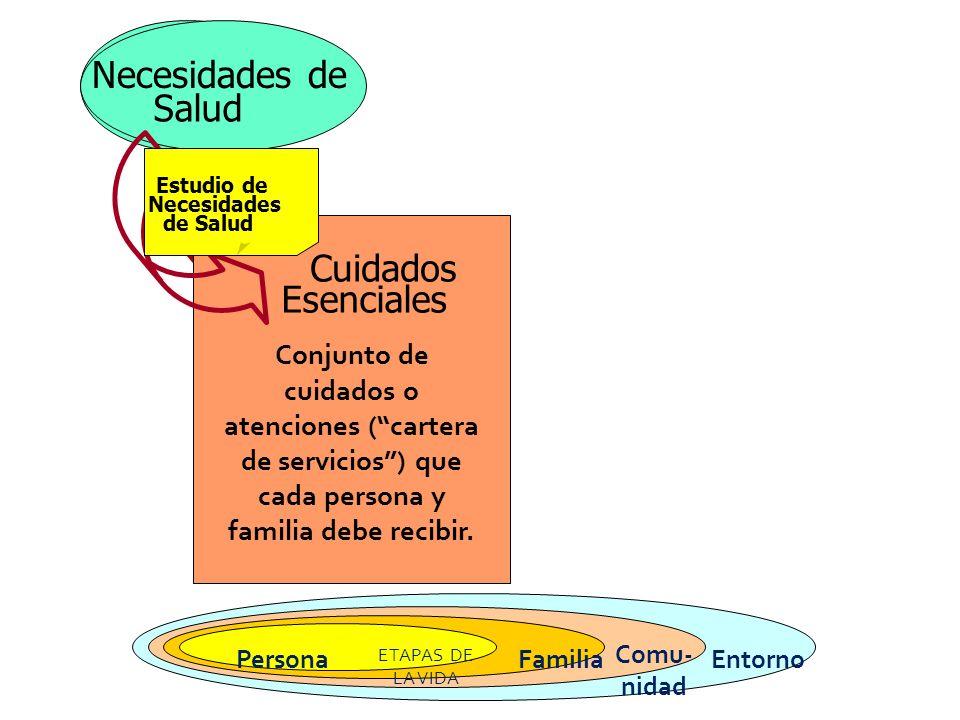 Necesidades de Salud Estudio de Necesidades de Salud Cuidados Esenciales Necesidades de Salud Estudio de Necesidades de Salud Cuidados Esenciales Conj