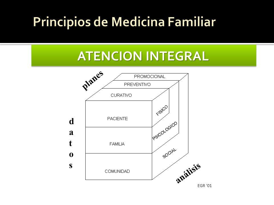 ATENCION INTEGRAL planes datosdatos análisis EGR 01