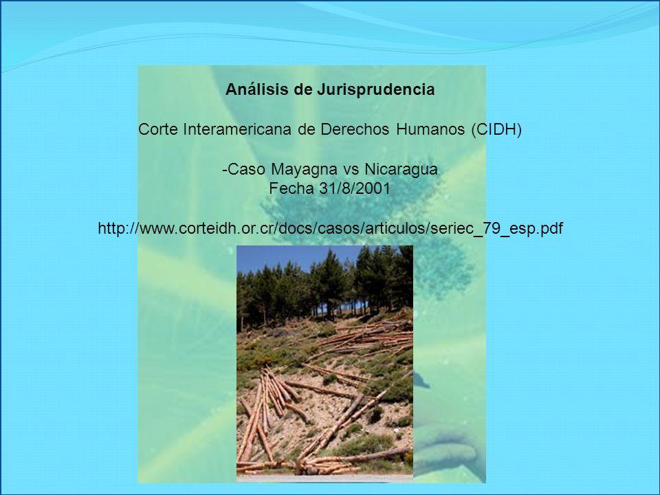 Análisis de Jurisprudencia Corte Interamericana de Derechos Humanos (CIDH) -Caso Mayagna vs Nicaragua Fecha 31/8/2001 http://www.corteidh.or.cr/docs/c