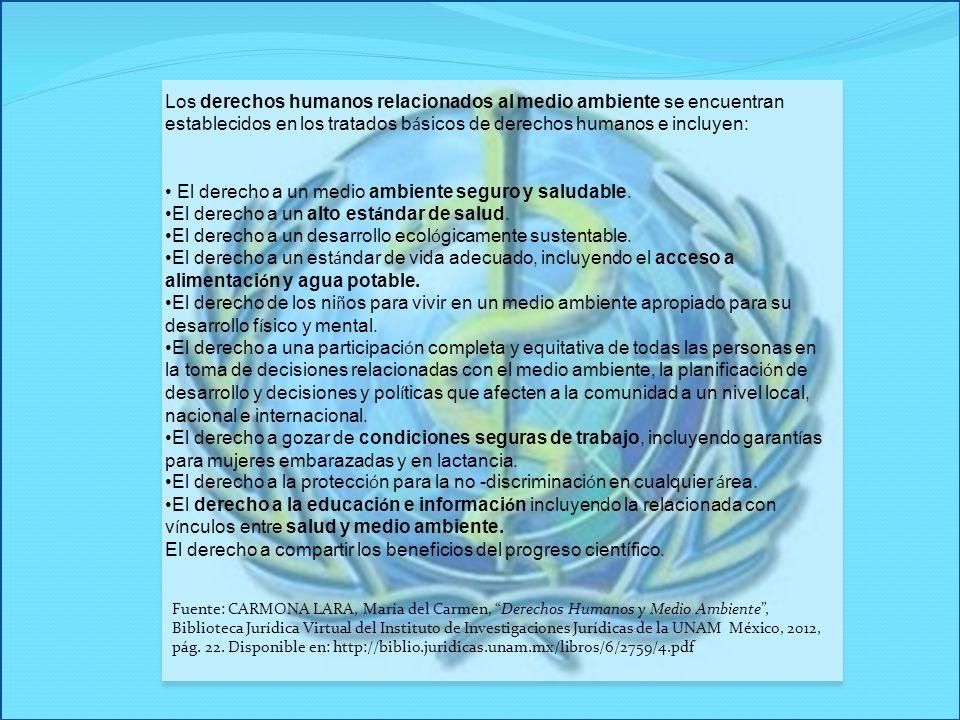 Los derechos humanos relacionados al medio ambiente se encuentran establecidos en los tratados b á sicos de derechos humanos e incluyen: El derecho a