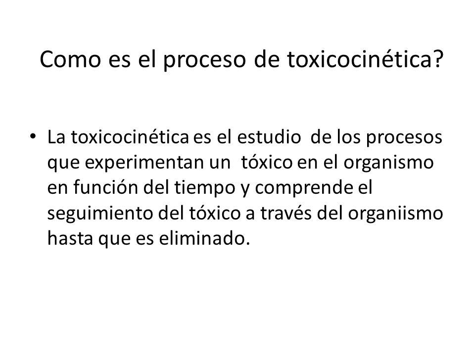 Como es el proceso de toxicocinética? La toxicocinética es el estudio de los procesos que experimentan un tóxico en el organismo en función del tiempo