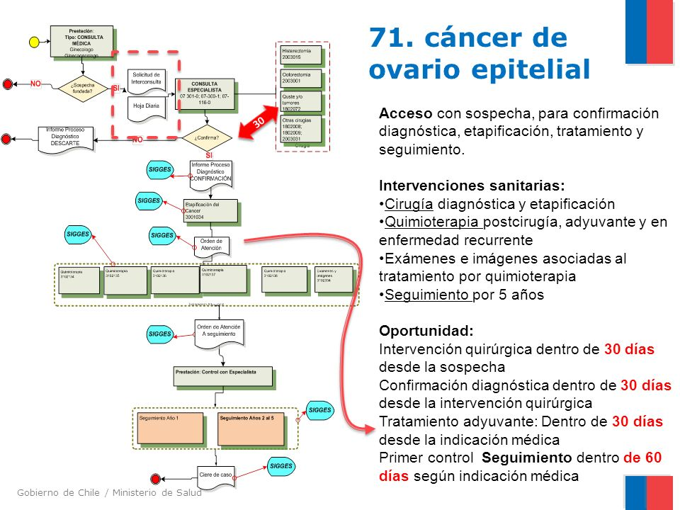 Gobierno de Chile / Ministerio de Salud 71. cáncer de ovario epitelial Acceso con sospecha, para confirmación diagnóstica, etapificación, tratamiento