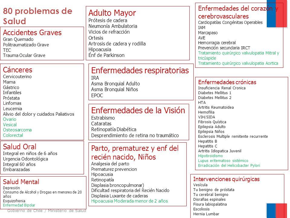 Gobierno de Chile / Ministerio de Salud Accidentes Graves Gran Quemado Politraumatizado Grave TEC Trauma Ocular Grave Adulto Mayor Prótesis de cadera