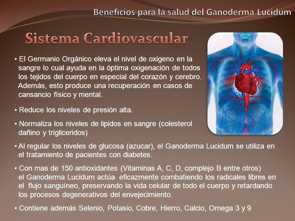 El Germanio Orgánico eleva el nivel de oxigeno en la sangre lo cual ayuda en la óptima oxigenación de todos los tejidos del cuerpo en especial del cor