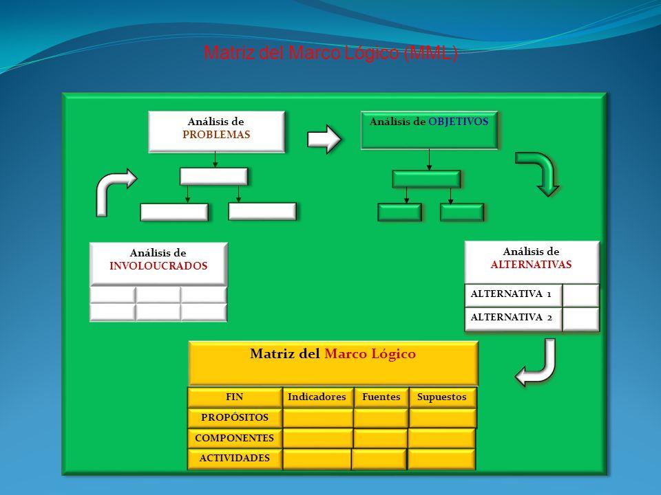 Matriz del Marco Lógico (MML) Matriz del Marco Lógico IndicadoresFuentesSupuestos PROPÓSITOS COMPONENTES FIN ACTIVIDADES Análisis de OBJETIVOS Análisi