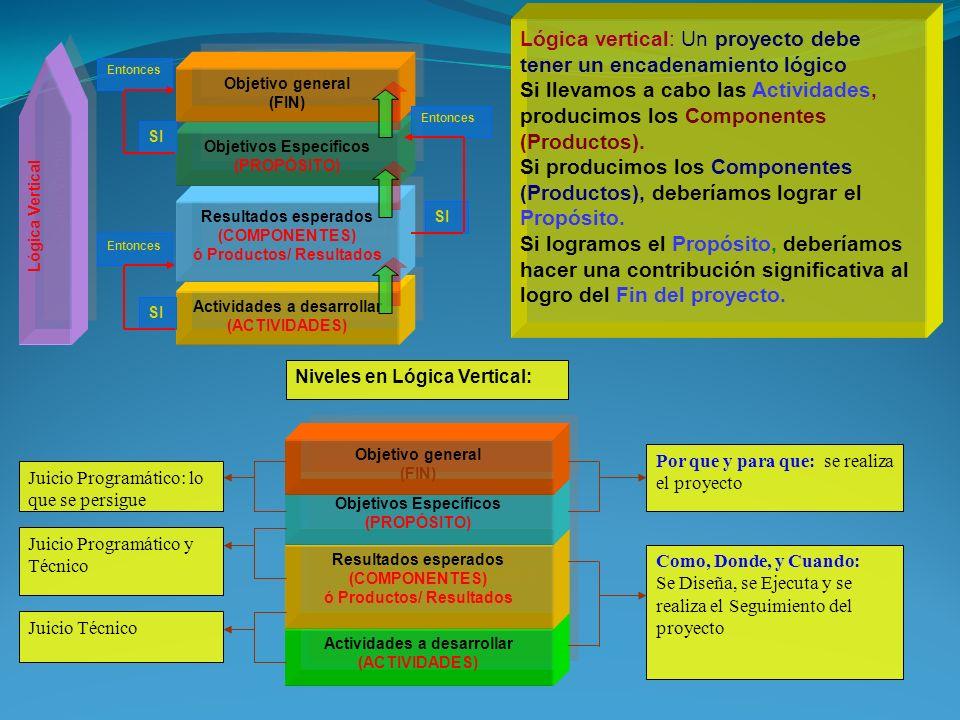 Lógica Vertical Actividades a desarrollar (ACTIVIDADES) Resultados esperados (COMPONENTES) ó Productos/ Resultados Objetivos Específicos (PROPÓSITO) Objetivo general (FIN) SI Entonces SI Entonces SI Entonces Actividades a desarrollar (ACTIVIDADES) Resultados esperados (COMPONENTES) ó Productos/ Resultados Objetivos Específicos (PROPÓSITO) Objetivo general (FIN) Por que y para que: se realiza el proyecto Como, Donde, y Cuando: Se Diseña, se Ejecuta y se realiza el Seguimiento del proyecto Juicio Programático: lo que se persigue Juicio Programático y Técnico Juicio Técnico Niveles en Lógica Vertical: Lógica vertical: Un proyecto debe tener un encadenamiento lógico Si llevamos a cabo las Actividades, producimos los Componentes (Productos).