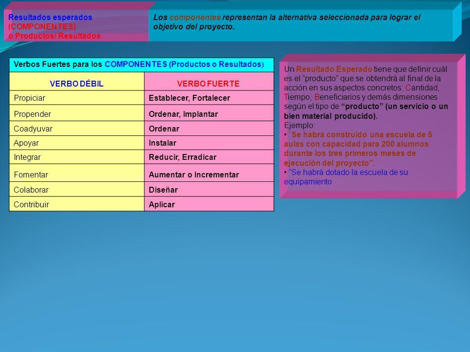 Resultados esperados (COMPONENTES) ó Productos/ Resultados Los componentes representan la alternativa seleccionada para lograr el objetivo del proyect