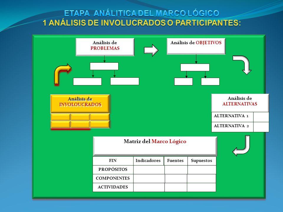 Matriz del Marco Lógico IndicadoresFuentesSupuestos PROPÓSITOS COMPONENTES FIN ACTIVIDADES Análisis de OBJETIVOS Análisis de ALTERNATIVAS ALTERNATIVA