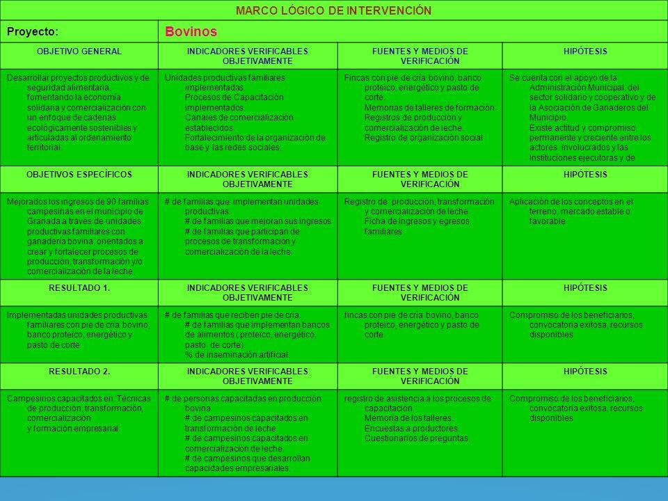MARCO LÓGICO DE INTERVENCIÓN Proyecto: Bovinos OBJETIVO GENERALINDICADORES VERIFICABLES OBJETIVAMENTE FUENTES Y MEDIOS DE VERIFICACIÓN HIPÓTESIS Desarrollar proyectos productivos y de seguridad alimentaria, fomentando la economía solidaria y comercialización con un enfoque de cadenas ecológicamente sostenibles y articuladas al ordenamiento territorial.