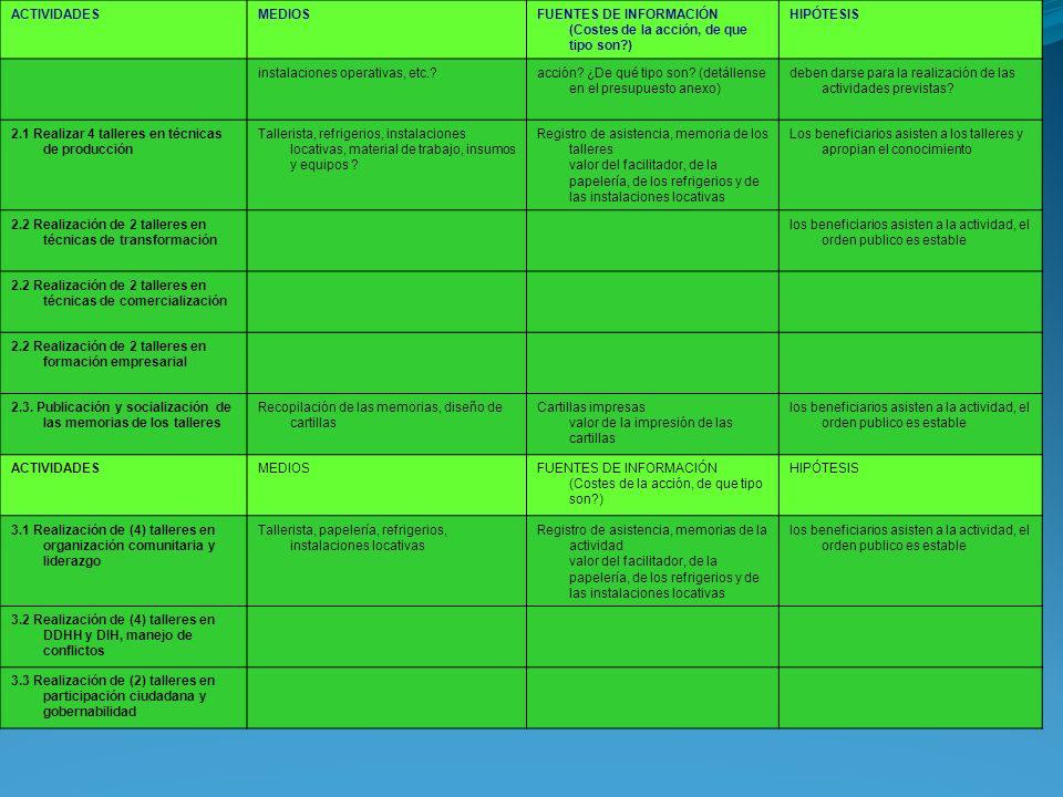 ACTIVIDADESMEDIOSFUENTES DE INFORMACIÓN (Costes de la acción, de que tipo son?) HIPÓTESIS instalaciones operativas, etc.?acción? ¿De qué tipo son? (de