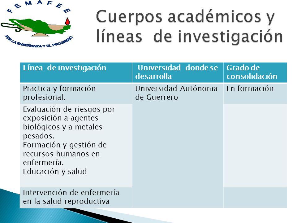 Línea de investigación Universidad donde se desarrolla Grado de consolidación Practica y formación profesional. Universidad Autónoma de Guerrero En fo