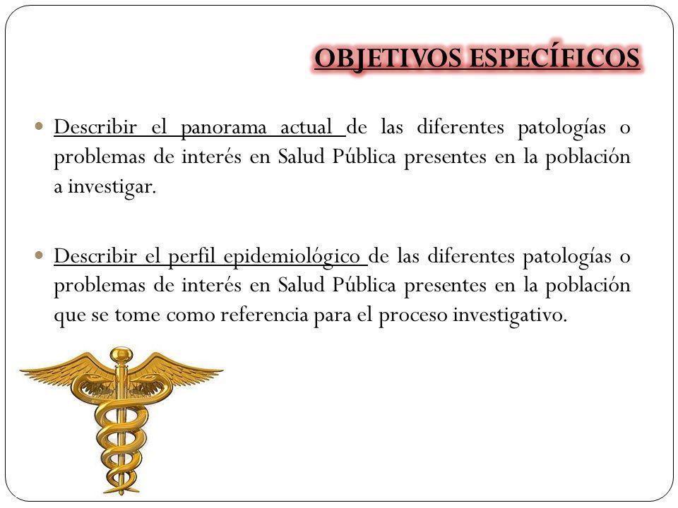 Describir el panorama actual de las diferentes patologías o problemas de interés en Salud Pública presentes en la población a investigar. Describir el