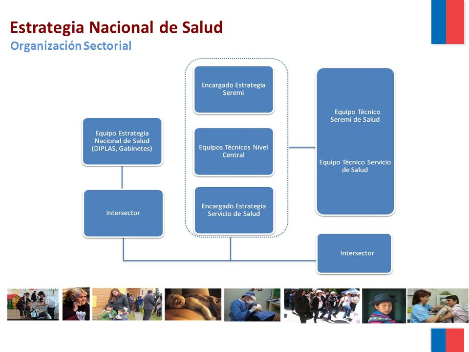 Estrategia Nacional de Salud Organización Sectorial