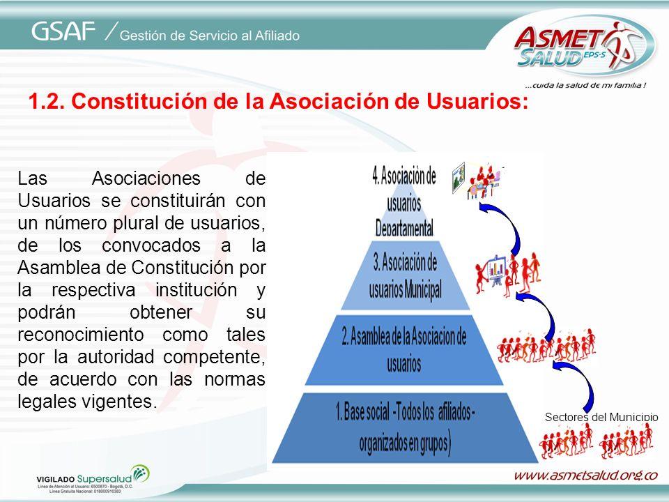 1.2. Constitución de la Asociación de Usuarios: Las Asociaciones de Usuarios se constituirán con un número plural de usuarios, de los convocados a la