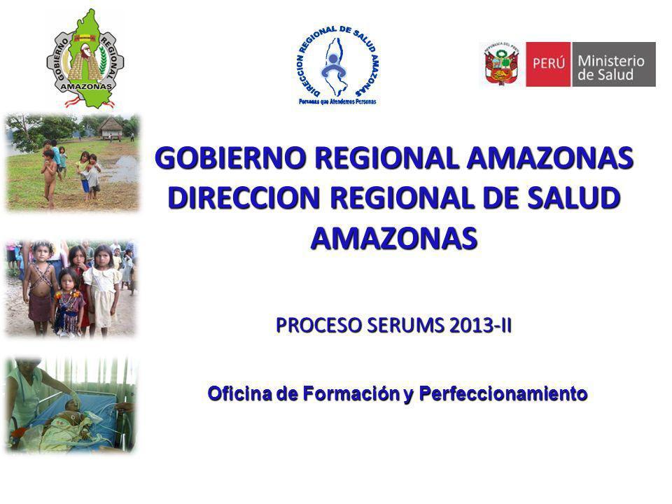 GOBIERNO REGIONAL AMAZONAS DIRECCION REGIONAL DE SALUD AMAZONAS PROCESO SERUMS 2013-II Oficina de Formación y Perfeccionamiento