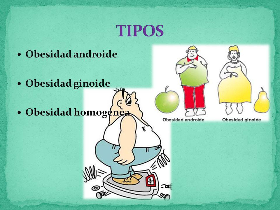 Obesidad androide Obesidad ginoide Obesidad homogénea