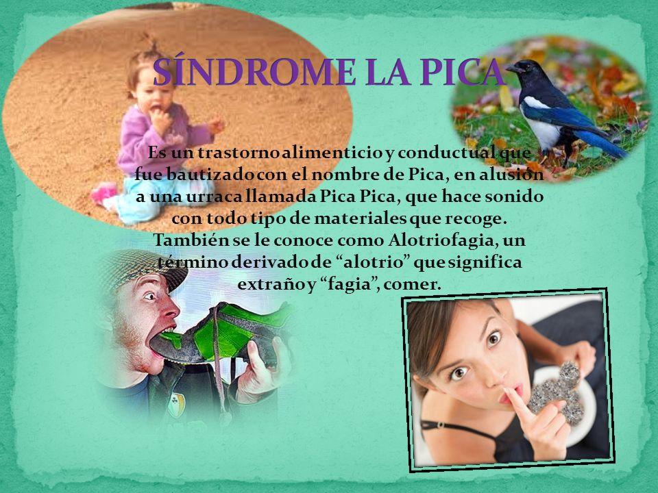 Es un trastorno alimenticio y conductual que fue bautizado con el nombre de Pica, en alusión a una urraca llamada Pica Pica, que hace sonido con todo tipo de materiales que recoge.