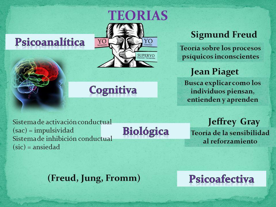 TEORIAS Sigmund Freud Teoría sobre los procesos psíquicos inconscientes Busca explicar como los individuos piensan, entienden y aprenden Jean Piaget Jeffrey Gray Teoría de la sensibilidad al reforzamiento Sistema de activación conductual (sac) = impulsividad Sistema de inhibición conductual (sic) = ansiedad (Freud, Jung, Fromm)