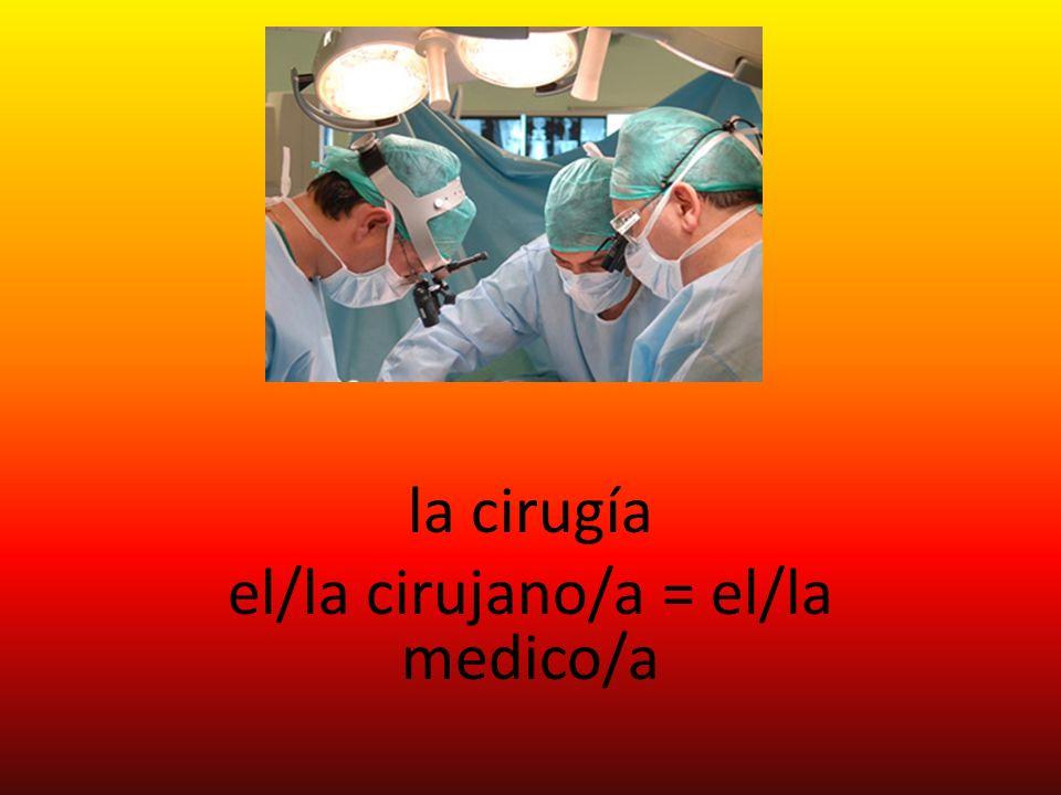 la cirugía el/la cirujano/a = el/la medico/a