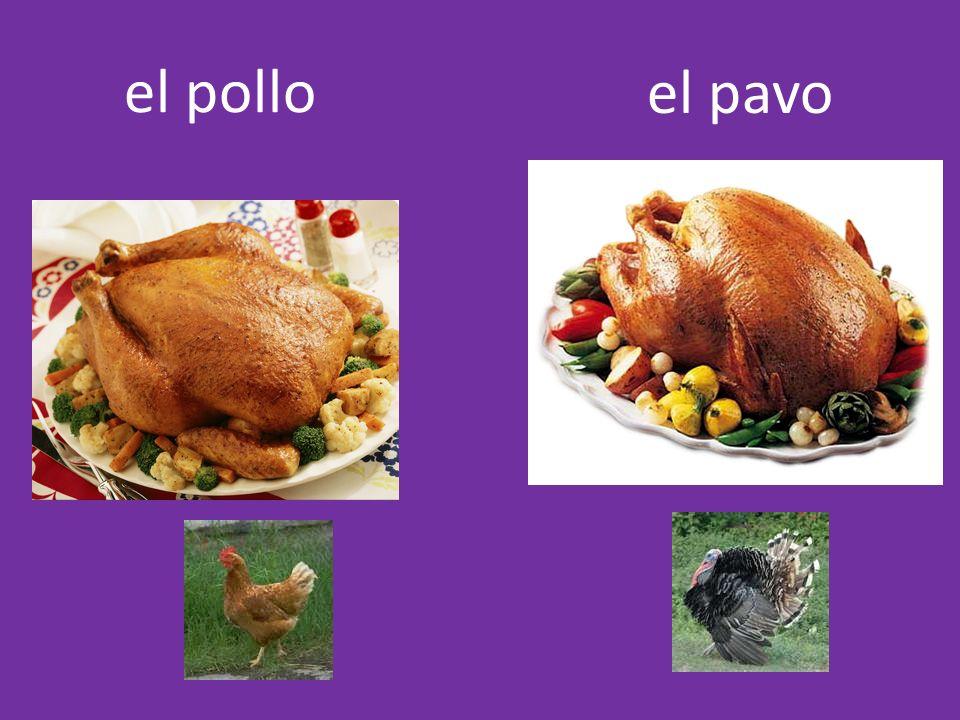 el pollo el pavo