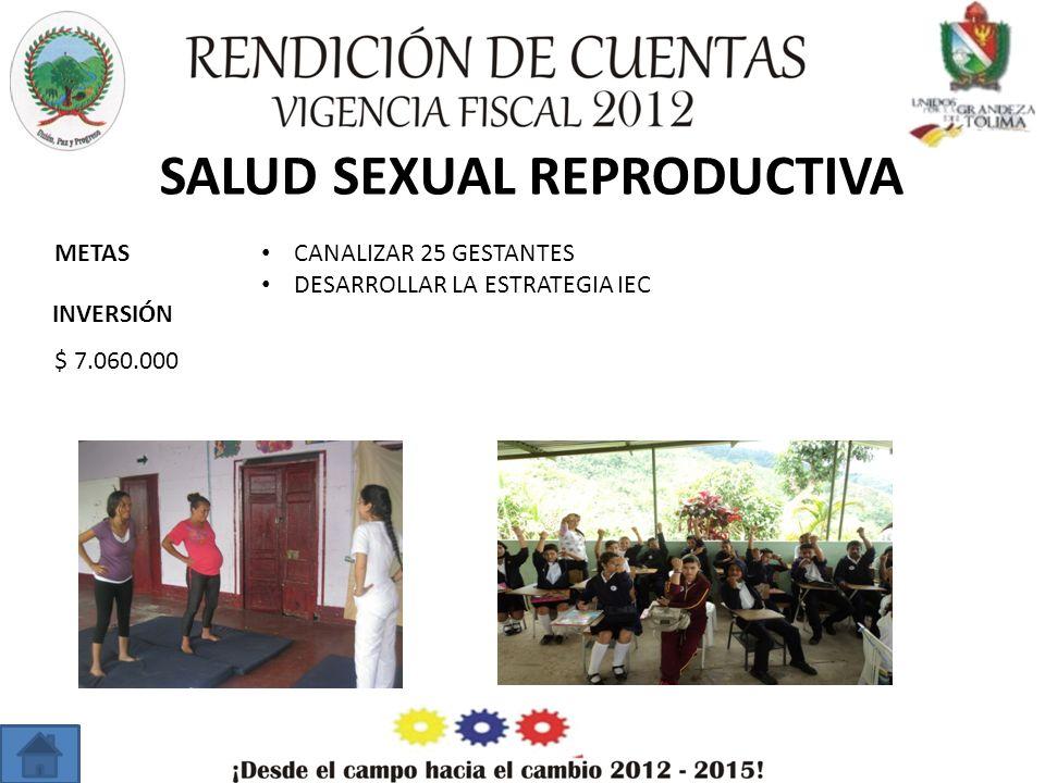 SALUD SEXUAL REPRODUCTIVA METAS INVERSIÓN CANALIZAR 25 GESTANTES DESARROLLAR LA ESTRATEGIA IEC $ 7.060.000