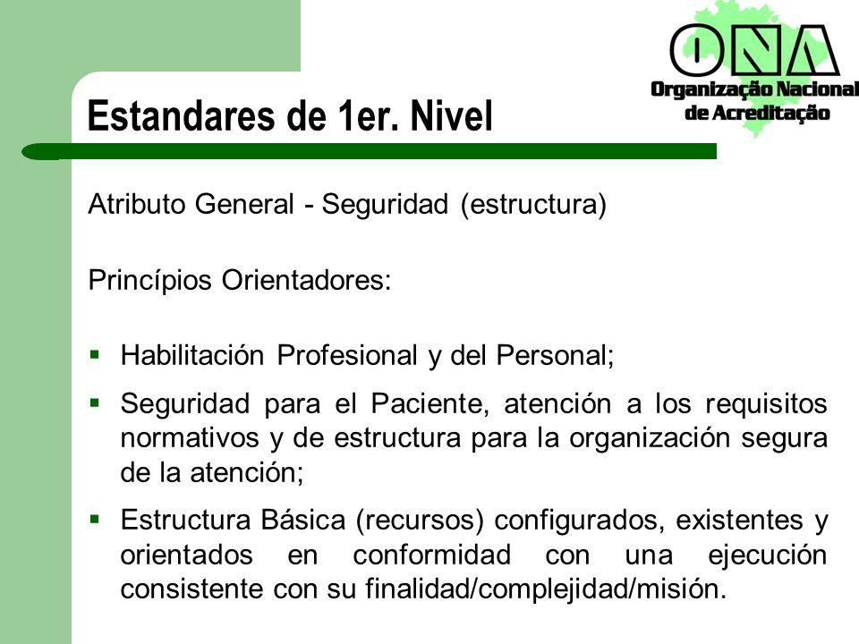 Estandares de 1er. Nivel Atributo General - Seguridad (estructura) Princípios Orientadores: Habilitación Profesional y del Personal; Seguridad para el