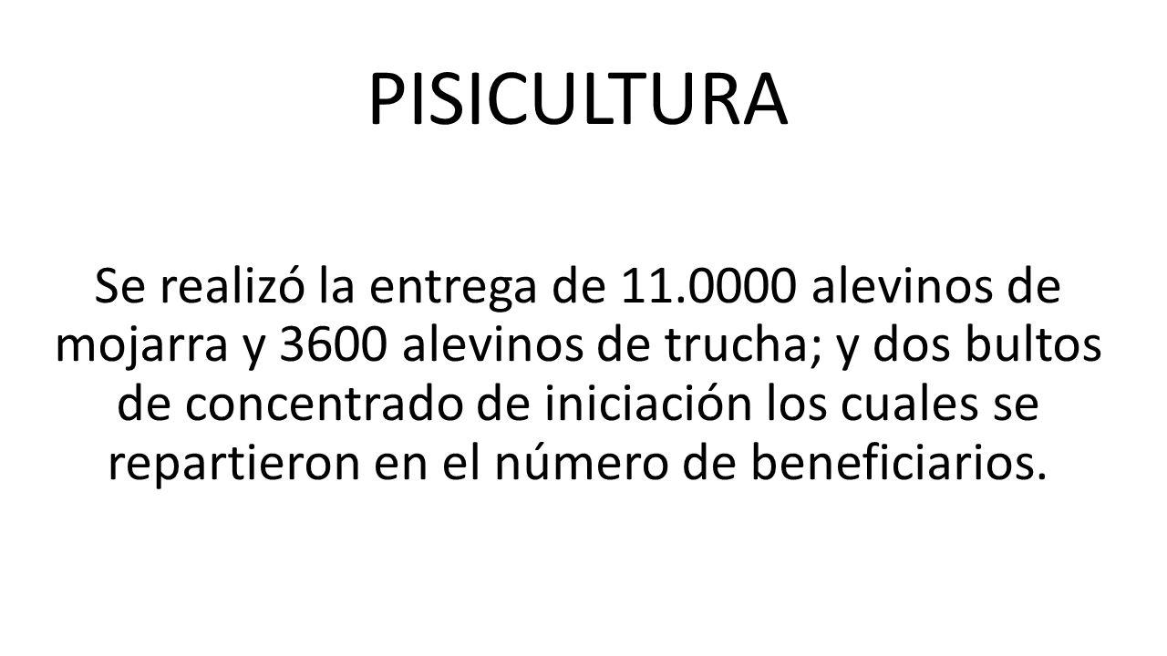 En la asistencia Técnica Agropecuaria se manejaron las siguientes líneas productivas: 1.Piscicultura.