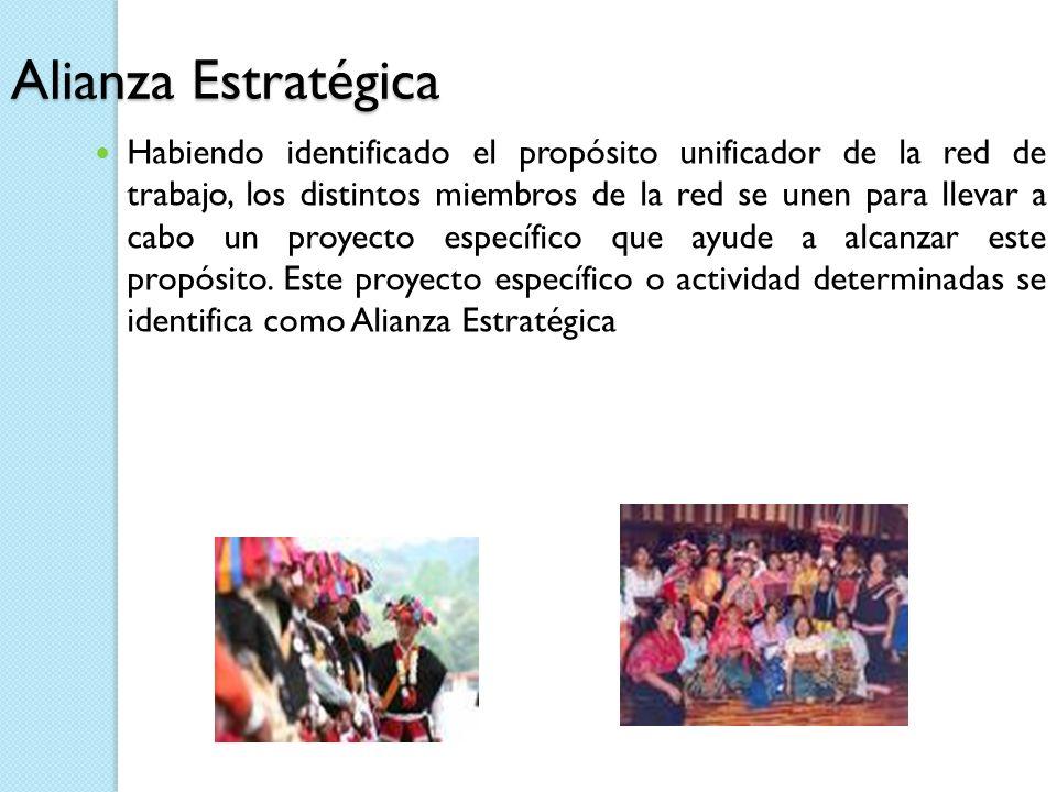 Alianza Estratégica Habiendo identificado el propósito unificador de la red de trabajo, los distintos miembros de la red se unen para llevar a cabo un