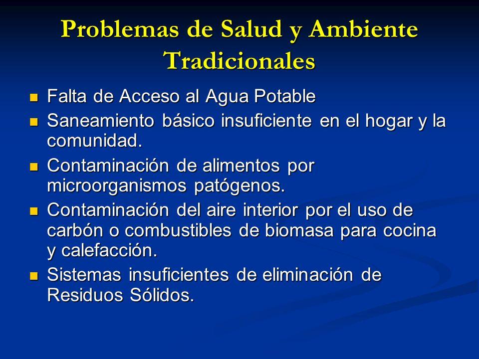 Problemas de Salud y Ambiente Tradicionales Falta de Acceso al Agua Potable Falta de Acceso al Agua Potable Saneamiento básico insuficiente en el hoga