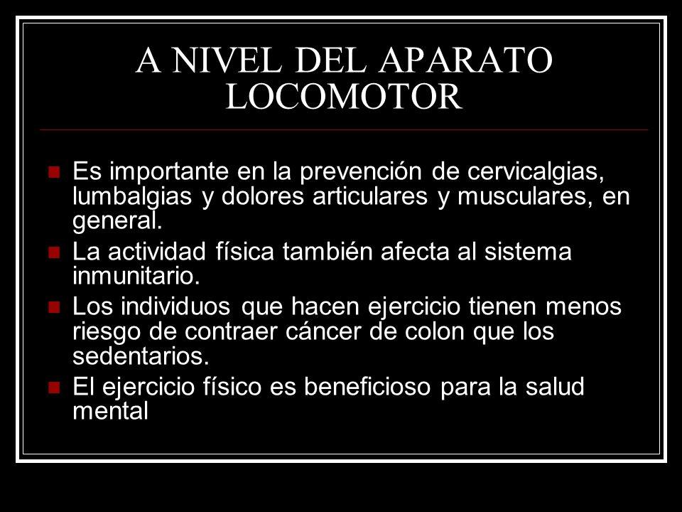 A NIVEL DEL APARATO LOCOMOTOR Es importante en la prevención de cervicalgias, lumbalgias y dolores articulares y musculares, en general. La actividad